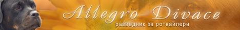 AllegroDivace - развъдник за ротвайлери